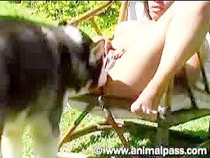 Oggi i Più Visti Video Zoofilialovers Videos De Zoofilia